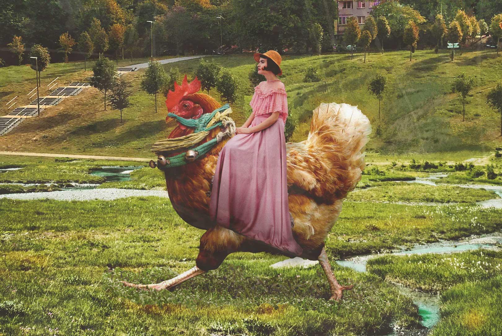 kobieta porusza się na kurze, żyje po swojemu